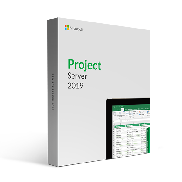 Microsoft Project Server 2019